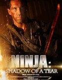 Ninja: Shadow of a Tear 2013