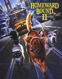 Homeward Bound 2: Lost in San Francisco 1996
