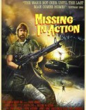 Missing in Action 1984