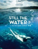 Still the Water 2014