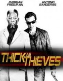 Thick as Thieves 2007